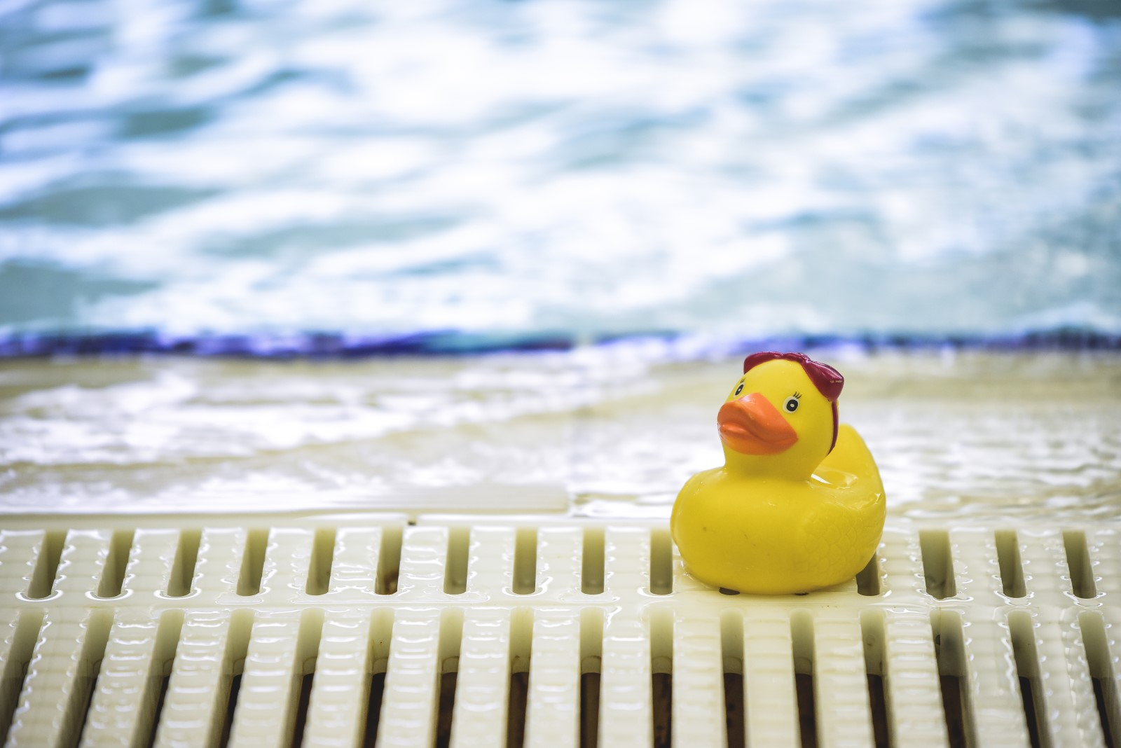 rubber duck on the side of a pool